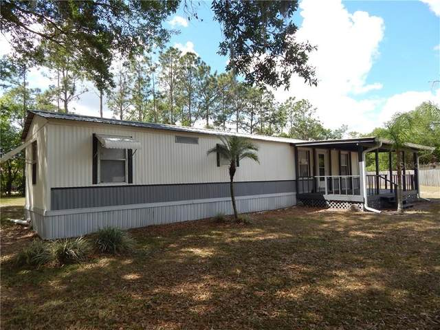 11102 Browning Road, Lithia, FL 33547 (MLS #T3233940) :: The Robertson Real Estate Group