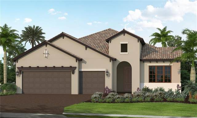 13215 Indigo Way, Bradenton, FL 34211 (MLS #T3233945) :: Zarghami Group