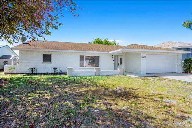 6520 King Palm Way, Apollo Beach, FL 33572 (MLS #T3233968) :: Team Bohannon Keller Williams, Tampa Properties