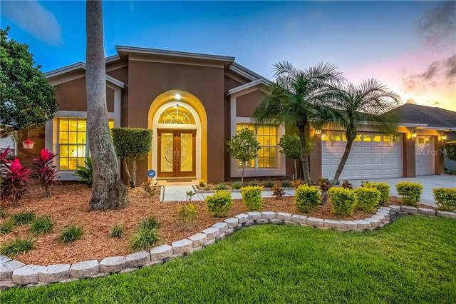 11928 Middlebury Drive, Tampa, FL 33626 (MLS #T3234015) :: Griffin Group