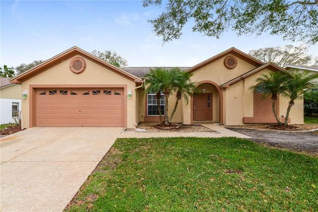 Address Not Published, Valrico, FL 33596 (MLS #T3234073) :: Team Bohannon Keller Williams, Tampa Properties