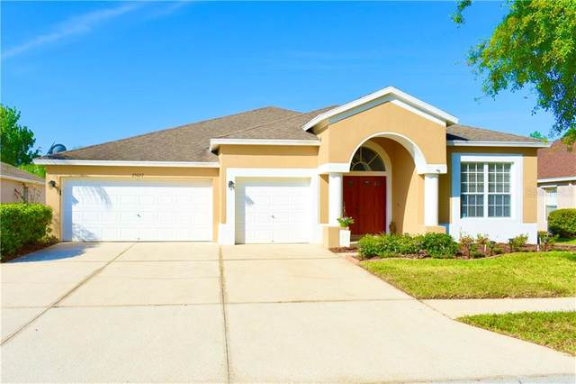 25622 Risen Star Drive, Wesley Chapel, FL 33544 (MLS #T3234076) :: Griffin Group