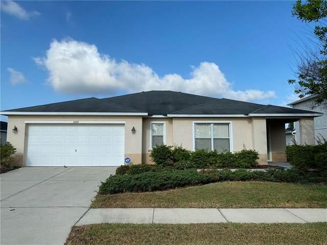5209 Moon Shell Drive, Apollo Beach, FL 33572 (MLS #T3234116) :: Lovitch Group, Keller Williams Realty South Shore