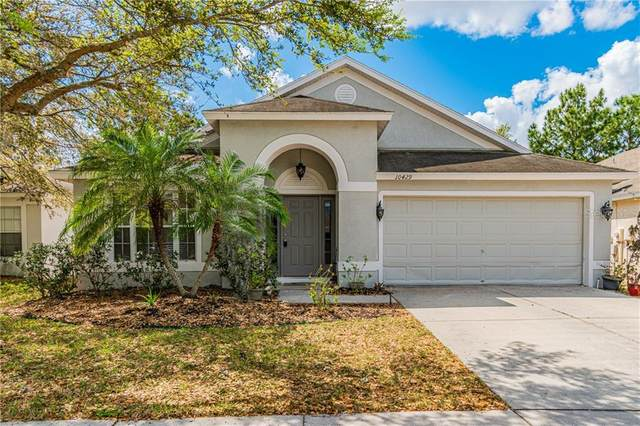 10429 Paragon Place, Riverview, FL 33578 (MLS #T3234138) :: Team Bohannon Keller Williams, Tampa Properties