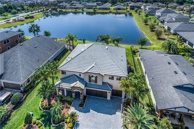 32230 Watoga Loop, Wesley Chapel, FL 33543 (MLS #T3234186) :: Premium Properties Real Estate Services