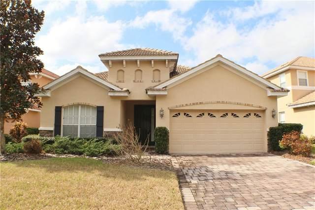 10911 Cory Lake Drive, Tampa, FL 33647 (MLS #T3234220) :: Team Bohannon Keller Williams, Tampa Properties