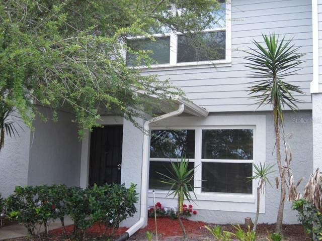 Address Not Published, Lutz, FL 33559 (MLS #T3234233) :: Team Bohannon Keller Williams, Tampa Properties