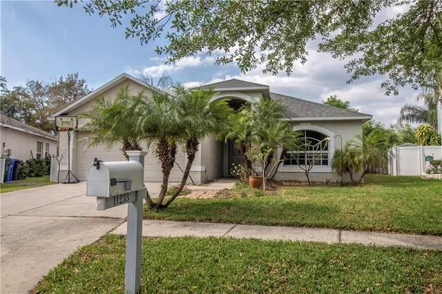 11233 Lake Lanier Drive, Riverview, FL 33569 (MLS #T3234235) :: EXIT King Realty