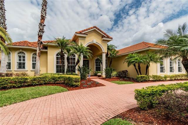 9818 Tree Tops Lake Road, Tampa, FL 33626 (MLS #T3234236) :: Griffin Group