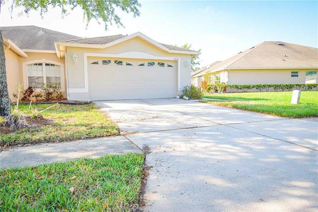31034 Whitlock Drive, Wesley Chapel, FL 33543 (MLS #T3234238) :: Team Bohannon Keller Williams, Tampa Properties