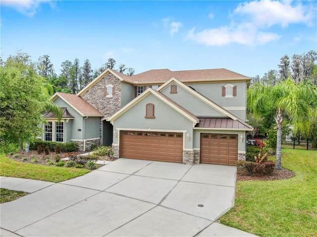 19118 Sweet Clover Lane, Tampa, FL 33647 (MLS #T3234242) :: Dalton Wade Real Estate Group