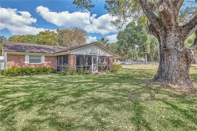 505 N Saint Cloud Avenue, Valrico, FL 33594 (MLS #T3234294) :: The Robertson Real Estate Group