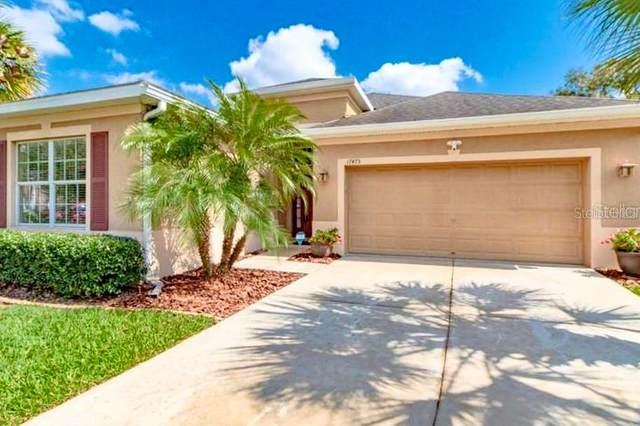 17475 New Cross Circle, Lithia, FL 33547 (MLS #T3234304) :: The Robertson Real Estate Group