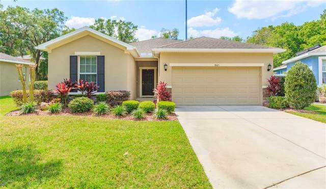 8605 Olive Moss Court, Riverview, FL 33569 (MLS #T3234350) :: Team Bohannon Keller Williams, Tampa Properties