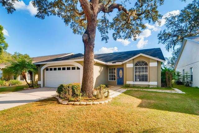 Address Not Published, Valrico, FL 33596 (MLS #T3234399) :: Team Bohannon Keller Williams, Tampa Properties