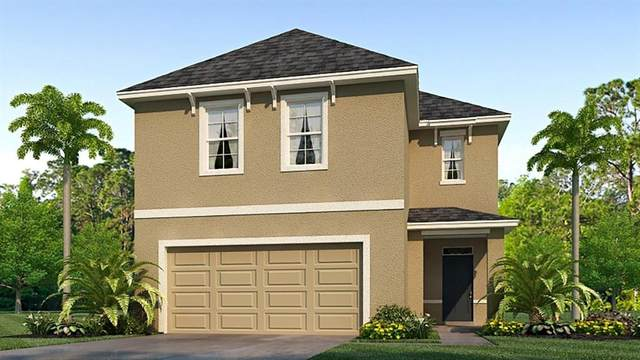 16708 Trite Bend Street, Wimauma, FL 33598 (MLS #T3234431) :: The Duncan Duo Team
