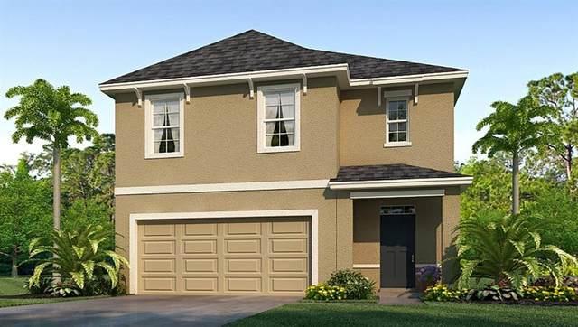 16712 Trite Bend Street, Wimauma, FL 33598 (MLS #T3234433) :: The Duncan Duo Team