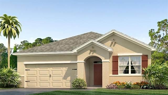 3887 SE 97TH Lane, Belleview, FL 34420 (MLS #T3234444) :: Bosshardt Realty