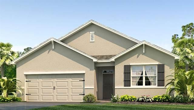 3706 SE 97TH Lane, Belleview, FL 34420 (MLS #T3234449) :: Your Florida House Team