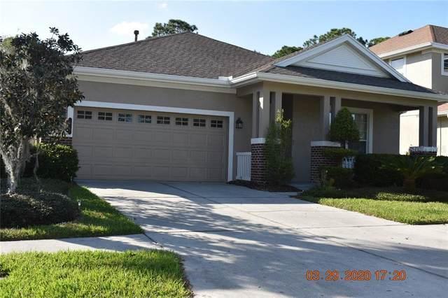 20074 Heritage Point Drive, Tampa, FL 33647 (MLS #T3234465) :: Team Bohannon Keller Williams, Tampa Properties