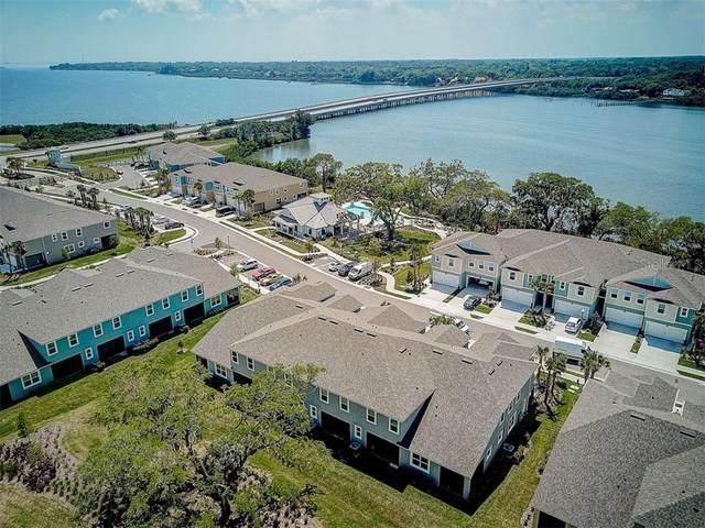 3004 Palm Key Avenue, Oldsmar, FL 34677 (MLS #T3234482) :: Team Borham at Keller Williams Realty