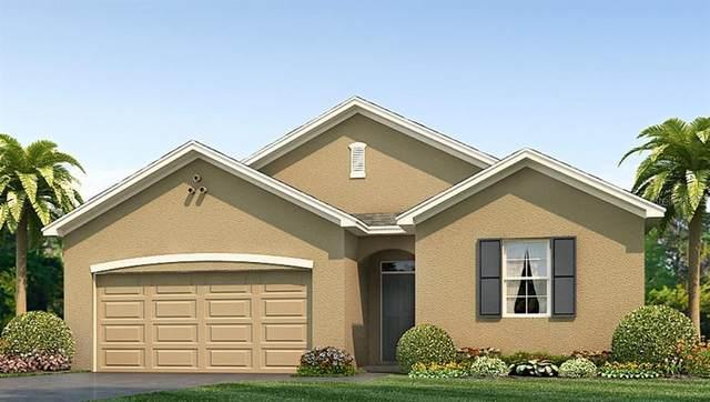 10206 Golden Light Court, Riverview, FL 33578 (MLS #T3234489) :: Griffin Group