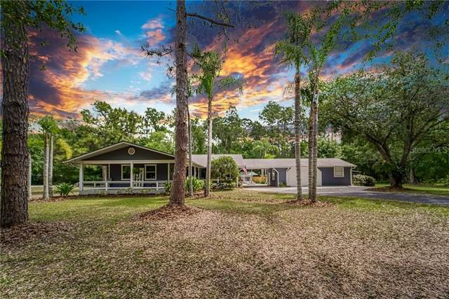 1608 Altamont Lane, Odessa, FL 33556 (MLS #T3234494) :: Premier Home Experts