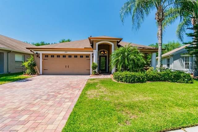 2418 Rosehaven Drive, Wesley Chapel, FL 33544 (MLS #T3234511) :: Premier Home Experts