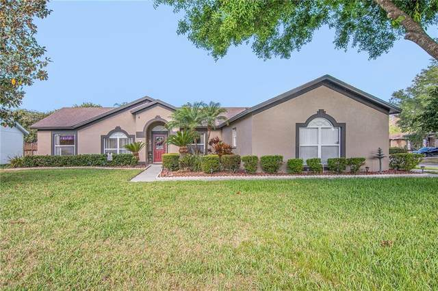 19808 Wyndmill Circle, Odessa, FL 33556 (MLS #T3234533) :: Premier Home Experts