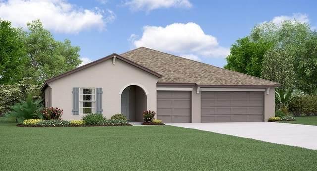 13577 Willow Bluestar Loop, Riverview, FL 33579 (MLS #T3234556) :: Gate Arty & the Group - Keller Williams Realty Smart