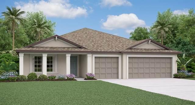13581 Willow Bluestar Loop, Riverview, FL 33579 (MLS #T3234563) :: Gate Arty & the Group - Keller Williams Realty Smart