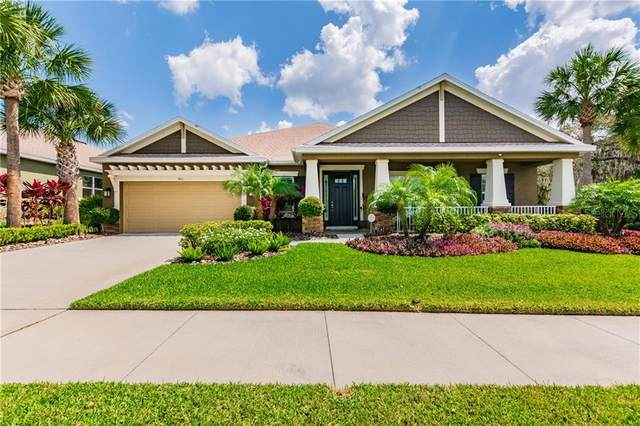 901 Heritage Groves Drive, Brandon, FL 33510 (MLS #T3234572) :: Griffin Group