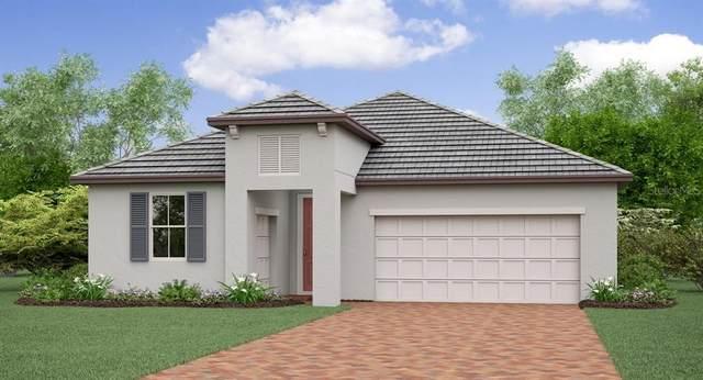31811 Cabana Rye Avenue, San Antonio, FL 33576 (MLS #T3234589) :: Burwell Real Estate