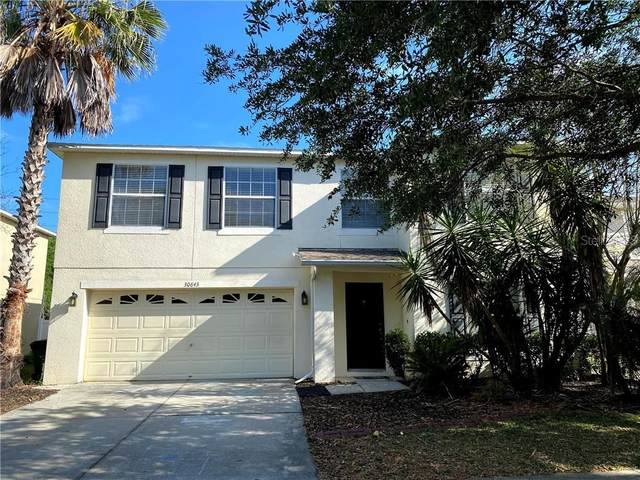 30843 Temple Stand Avenue, Wesley Chapel, FL 33543 (MLS #T3234597) :: Griffin Group