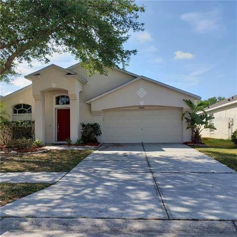 30728 Birdhouse Drive, Wesley Chapel, FL 33545 (MLS #T3234598) :: Premier Home Experts