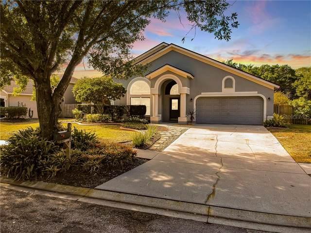 9220 Sunnyoak Drive, Riverview, FL 33569 (MLS #T3234612) :: The Brenda Wade Team