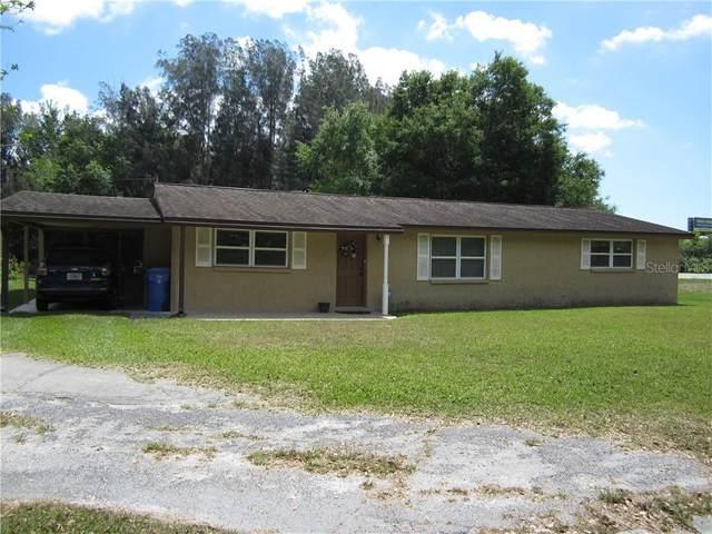10819 N Hubert Avenue, Tampa, FL 33618 (MLS #T3234664) :: Cartwright Realty