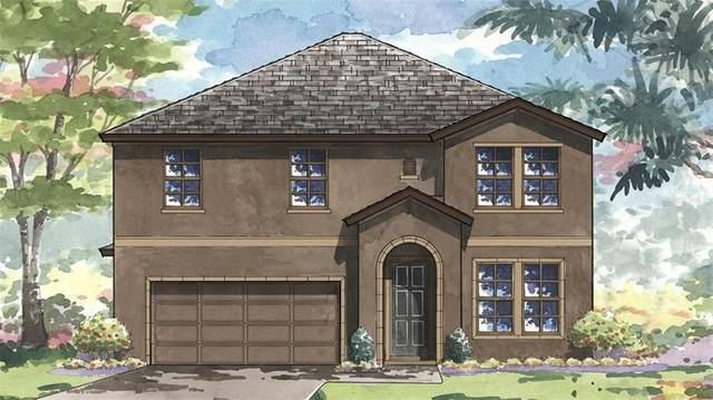 13123 Foxtail Fern Drive, Riverview, FL 33579 (MLS #T3234685) :: Cartwright Realty
