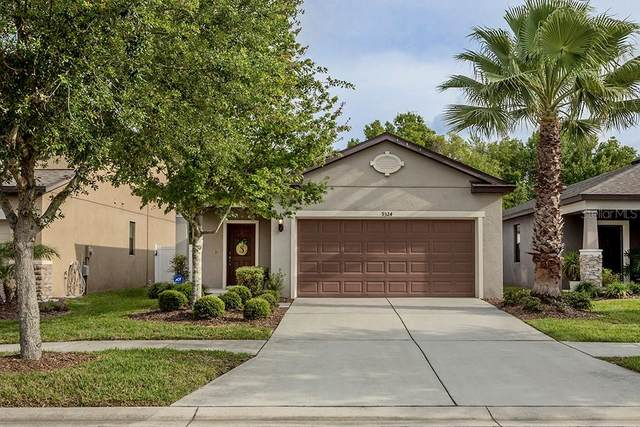 9324 Sapphireberry Lane, Riverview, FL 33578 (MLS #T3234705) :: The Duncan Duo Team