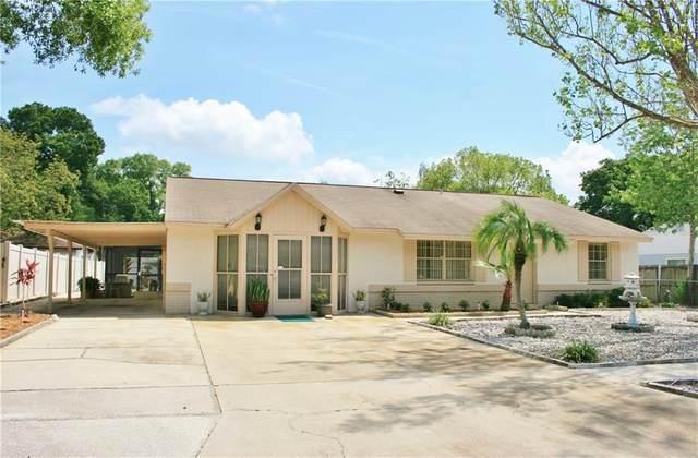 3216 King Charles Circle, Seffner, FL 33584 (MLS #T3234722) :: Zarghami Group