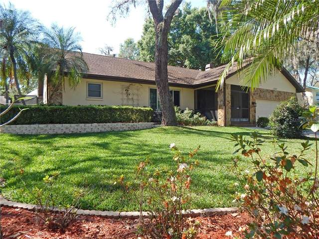 2757 Buckhorn Oaks Drive, Valrico, FL 33594 (MLS #T3234724) :: Dalton Wade Real Estate Group