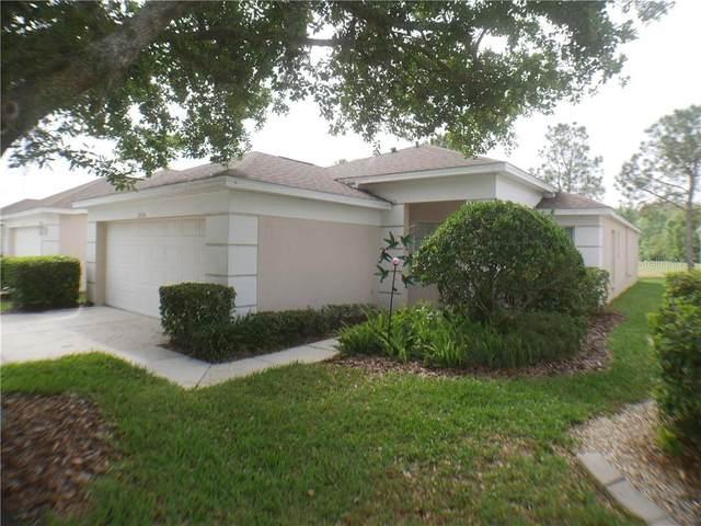 26536 Whirlaway Terrace, Wesley Chapel, FL 33544 (MLS #T3234755) :: Team TLC   Mihara & Associates