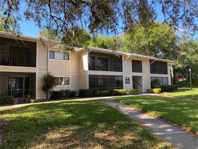 6004 Laketree Lane N, Temple Terrace, FL 33617 (MLS #T3234774) :: Team Borham at Keller Williams Realty