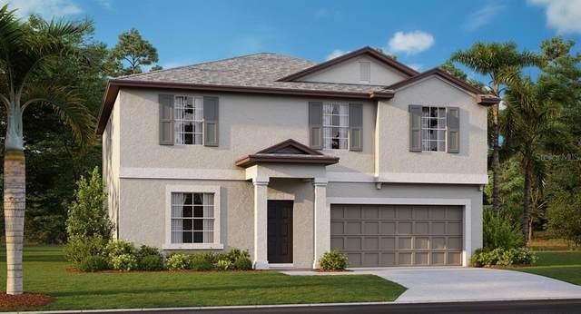 10521 Strawberry Tetra Drive, Riverview, FL 33578 (MLS #T3234782) :: The Brenda Wade Team
