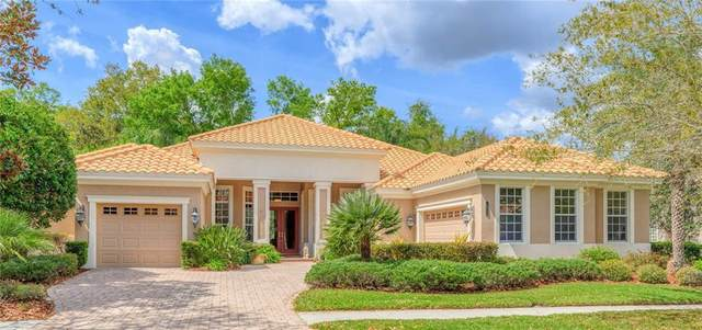 20118 Oak Alley Drive, Tampa, FL 33647 (MLS #T3234788) :: Cartwright Realty