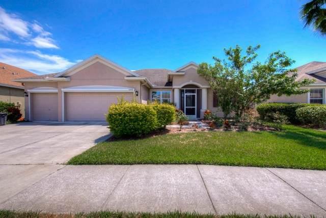 5597 Superior Drive, Lakeland, FL 33805 (MLS #T3234801) :: Lovitch Group, Keller Williams Realty South Shore