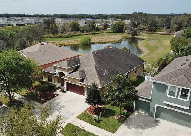 10123 Caraway Spice Avenue, Riverview, FL 33578 (MLS #T3234806) :: Lovitch Group, Keller Williams Realty South Shore