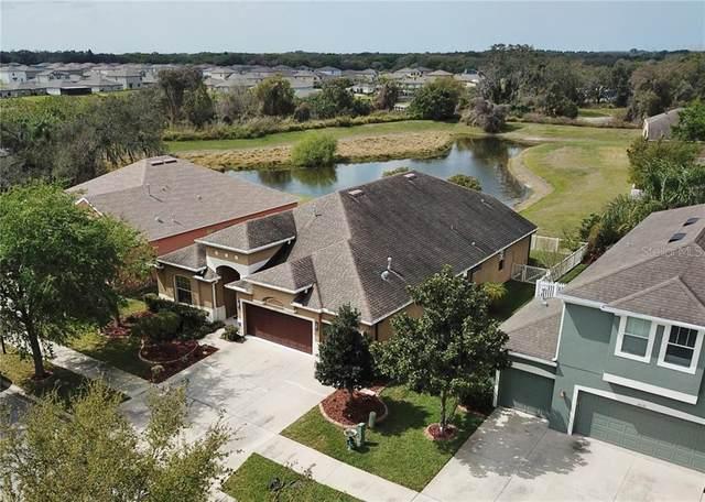 10123 Caraway Spice Avenue, Riverview, FL 33578 (MLS #T3234806) :: Premium Properties Real Estate Services