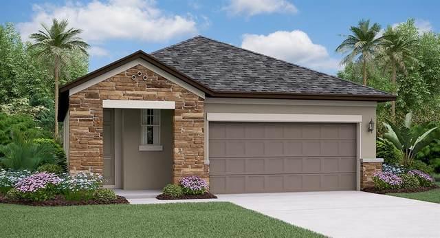 4071 Cadence Loop, Land O Lakes, FL 34638 (MLS #T3234848) :: Premier Home Experts