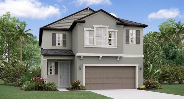4216 Cadence Loop, Land O Lakes, FL 34638 (MLS #T3234852) :: Premier Home Experts